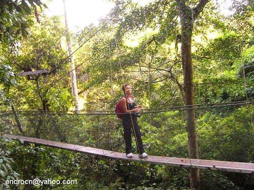 Bersahabat dengan Keremangan di Taman Nasional Gunung Mulu